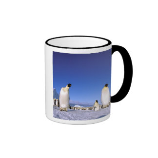 Antarctica, Antarctic Peninsula, Weddell Sea, 3 Ringer Mug