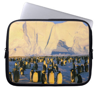Antarctica, Antarctic Peninsula, Weddell Sea, 4 Laptop Sleeves