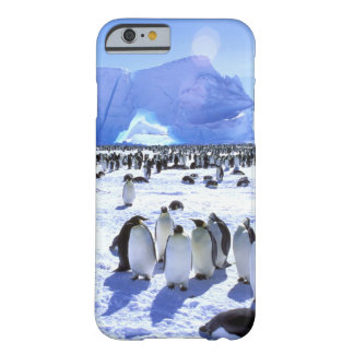 Antarctica, Antarctic Peninsula, Weddell Sea 5 Barely There iPhone 6 Case
