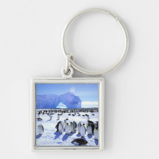 Antarctica, Antarctic Peninsula, Weddell Sea, 5 Keychain
