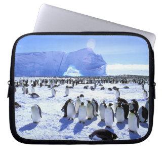 Antarctica, Antarctic Peninsula, Weddell Sea, 5 Laptop Computer Sleeves