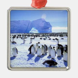 Antarctica, Antarctic Peninsula, Weddell Sea, 5 Metal Ornament