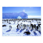 Antarctica, Antarctic Peninsula, Weddell Sea, 5 Postcard