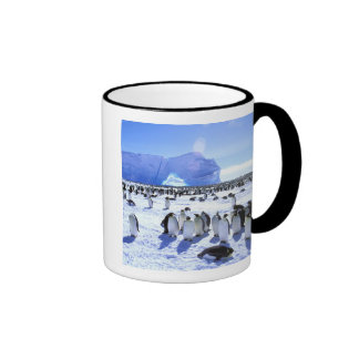 Antarctica, Antarctic Peninsula, Weddell Sea, 5 Ringer Mug