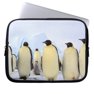 Antarctica, Antarctic Peninsula, Weddell Sea, Laptop Sleeve