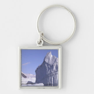 Antarctica, Antarctic Peninsula. Zodiak and Keychain