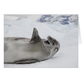 Antarctica, Antarctic Penninsula, Antarctic 2 Card