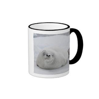 Antarctica, Antarctic Penninsula, Antarctic Coffee Mug