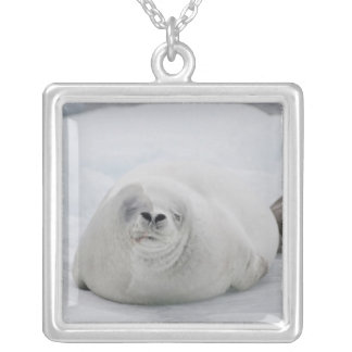 Antarctica, Antarctic Penninsula, Antarctic Personalized Necklace