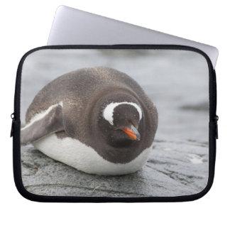 Antarctica, Antarctic Penninsula. Petermann Laptop Computer Sleeve