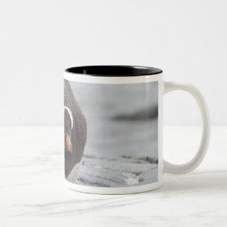 Antarctica, Antarctic Penninsula. Petermann Two-Tone Coffee Mug