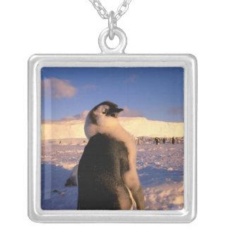 Antarctica, Australian Antarctic Territory, 2 Silver Plated Necklace