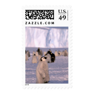 Antarctica, Australian Antarctic Territory, 3 Stamps