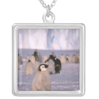 Antarctica, Australian Antarctic Territory, 3 Silver Plated Necklace