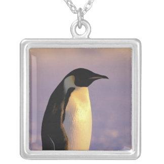 Antarctica, Australian Antarctic Territory, 4 Silver Plated Necklace
