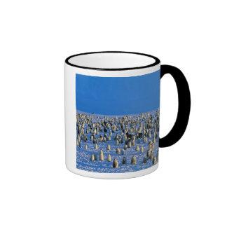 Antarctica, Australian Antarctic Territory, 5 Ringer Mug