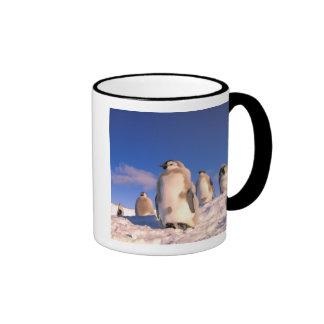 Antarctica, Australian Antarctic Territory, 6 Mug
