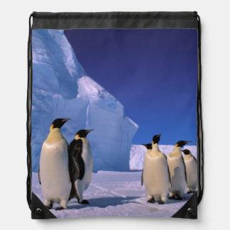 Antarctica, Australian Antarctic Territory, 7 Drawstring Backpack