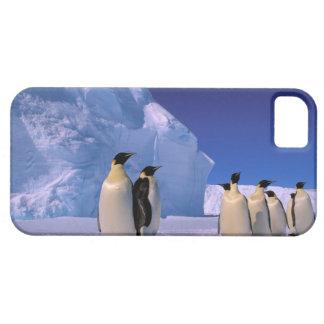 Antarctica, Australian Antarctic Territory, 7 iPhone SE/5/5s Case