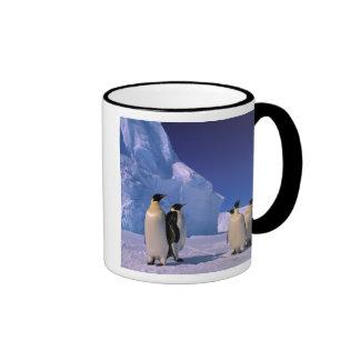 Antarctica, Australian Antarctic Territory, 7 Coffee Mugs