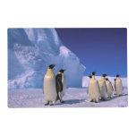 Antarctica, Australian Antarctic Territory, 7 Laminated Place Mat
