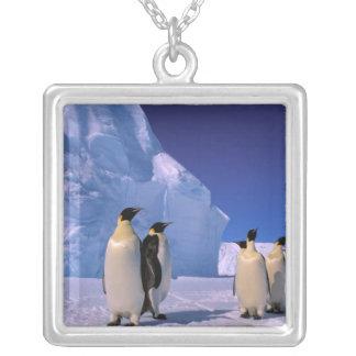 Antarctica, Australian Antarctic Territory, 7 Silver Plated Necklace