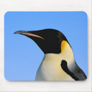 Antarctica, Australian Antarctic Territory, 8 Mouse Pad