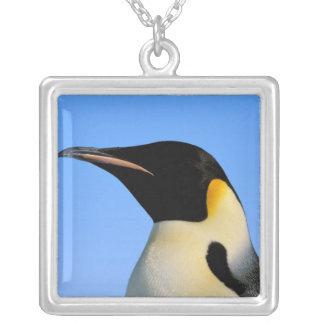 Antarctica, Australian Antarctic Territory, 8 Silver Plated Necklace