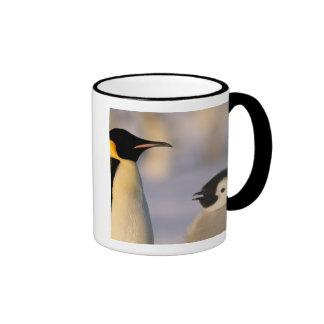Antarctica, Australian Antarctic Territory, Mug