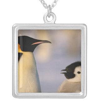 Antarctica, Australian Antarctic Territory, Silver Plated Necklace