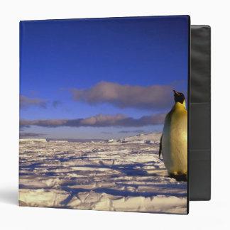 Antarctica, Cape Darnley. Emperor Penguin Vinyl Binder