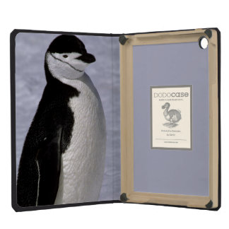 Antarctica. Chinstrap penguin 2 iPad Mini Cover