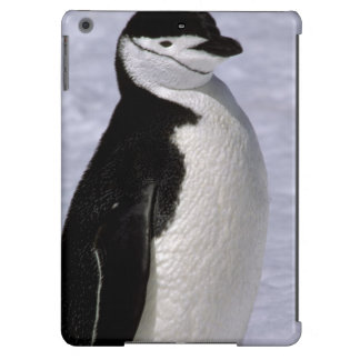 Antarctica. Chinstrap penguin 2 Cover For iPad Air
