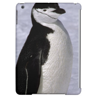 Antarctica. Chinstrap penguin 2 iPad Air Cases