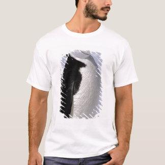 Antarctica. Chinstrap penguin 2 T-Shirt