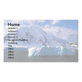 Antarctica Double-Sided Standard Business Cards (Pack Of 100)