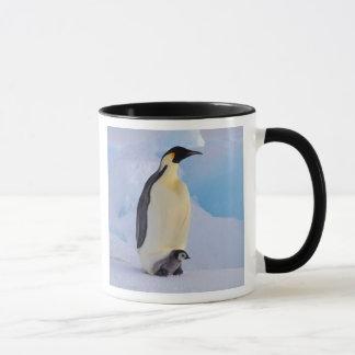 Antarctica, Emperor Penguin (Aptenodytes Mug