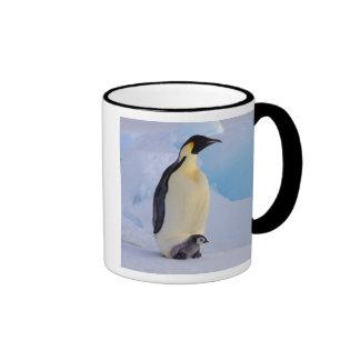 Antarctica, Emperor Penguin (Aptenodytes Ringer Coffee Mug
