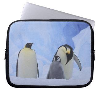 Antarctica. Emperor penguins and chick Computer Sleeve