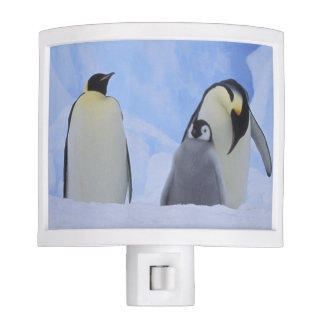 Antarctica. Emperor penguins and chick Night Light