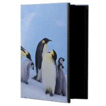 Antarctica, Emporer Penguin ((Aptenodytes Cover For iPad Air