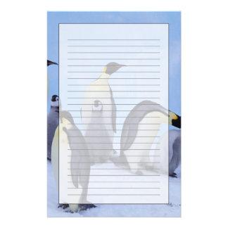 Antarctica, Emporer Penguin ((Aptenodytes Stationery