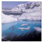 Antarctica. Expedition through icescapes 2 Ceramic Tile