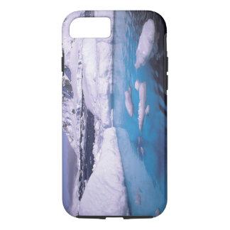 Antarctica. Expedition through icescapes 2 iPhone 8/7 Case