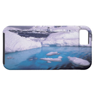Antarctica. Expedition through icescapes 2 iPhone SE/5/5s Case