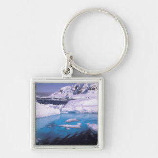 Antarctica Expedition through icescapes 2 Key Chains