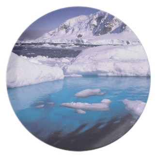 Antarctica. Expedition through icescapes 2 Plate