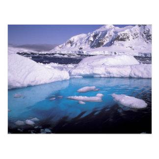 Antarctica. Expedition through icescapes 2 Postcard