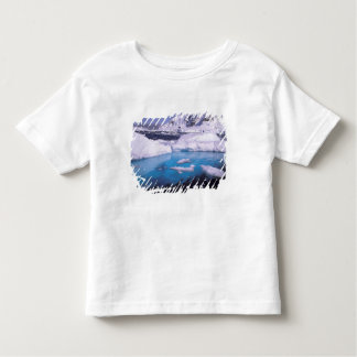 Antarctica. Expedition through icescapes 2 Toddler T-shirt