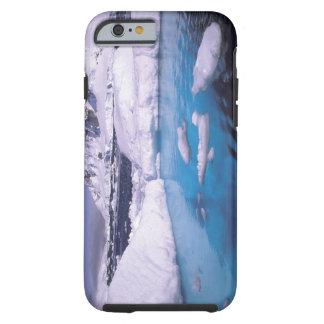 Antarctica. Expedition through icescapes 2 Tough iPhone 6 Case